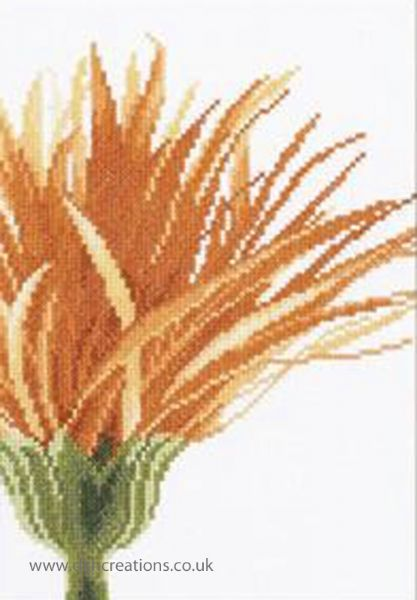 Close Up Orange Flower Cross Stitch Kit